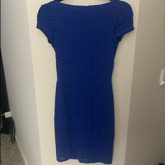 Blue Lace Fitted Dress